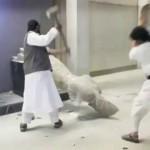Islamistas destruyen estatuas